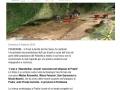 14-02-09-www.leggo.it_NEWS_ITALIA_pradis_trovati_reperti_del_pale